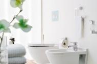 Панель змиву для пісуару TECEloop urinal пластикова, білий+хром 9.242.627